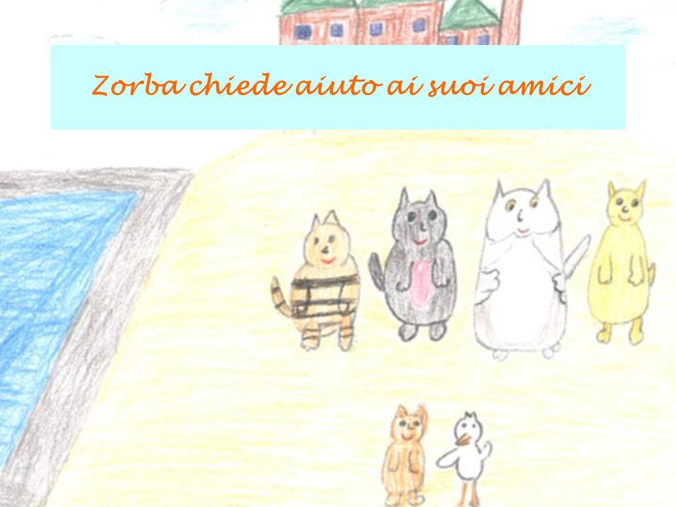 Zorba chiede aiuto ai suoi amici