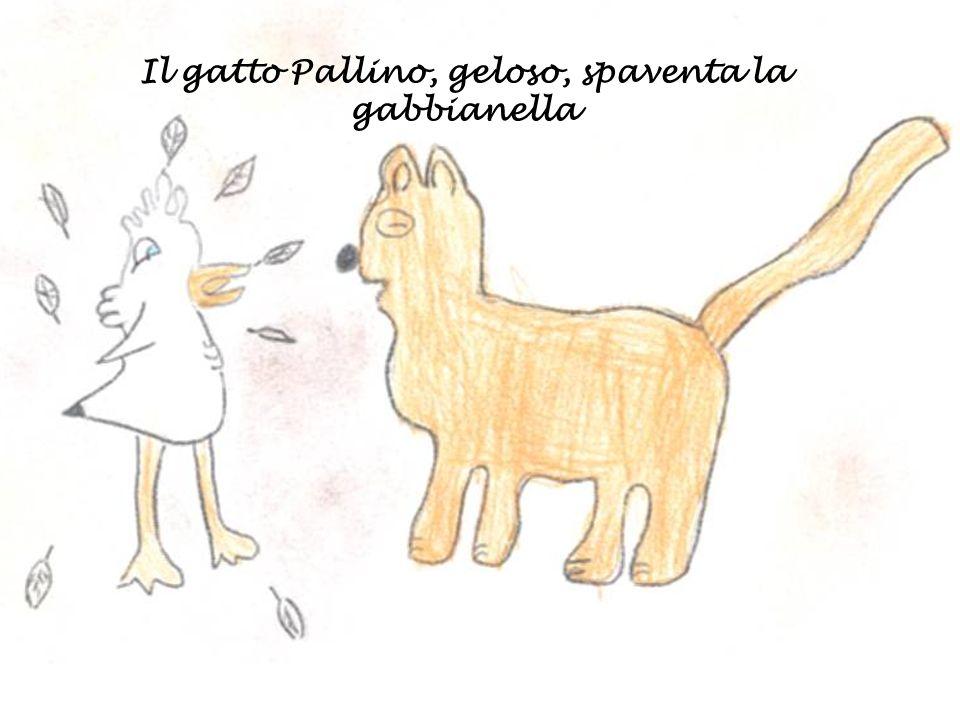 Il gatto Pallino, geloso, spaventa la gabbianella