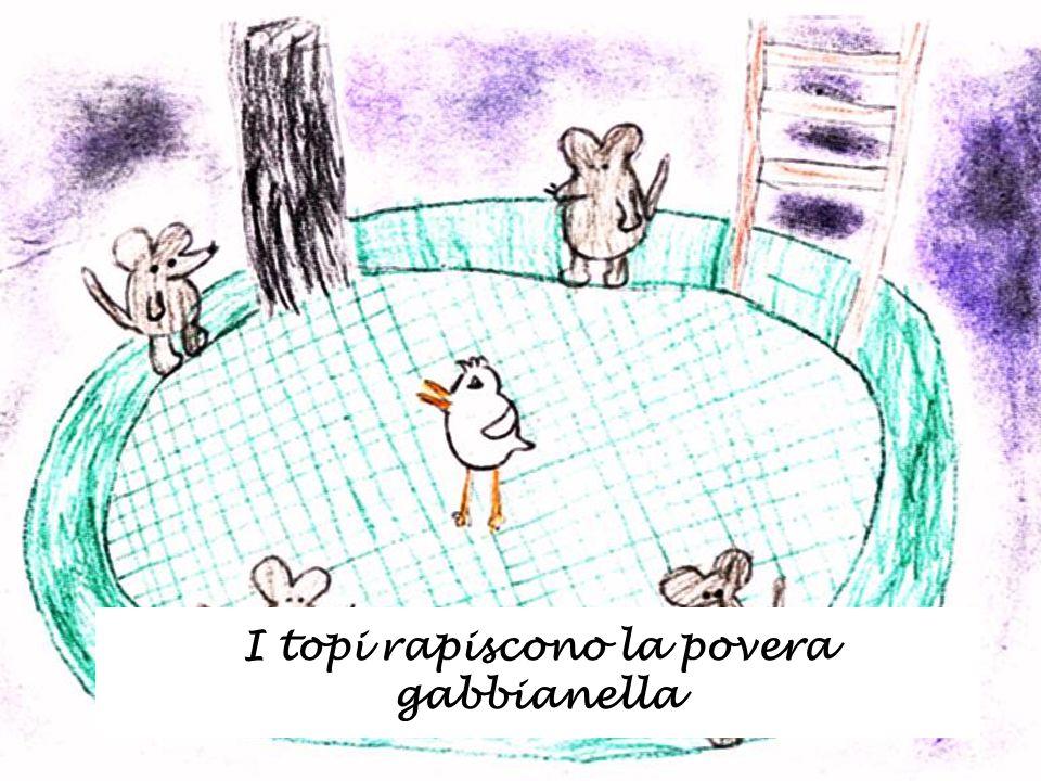 I topi rapiscono la povera gabbianella
