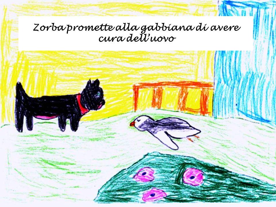 Zorba promette alla gabbiana di avere cura dell'uovo