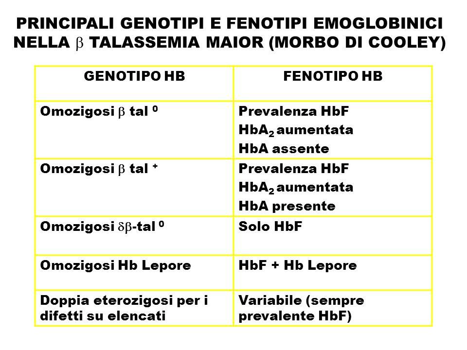 PRINCIPALI GENOTIPI E FENOTIPI EMOGLOBINICI NELLA  TALASSEMIA MAIOR (MORBO DI COOLEY)