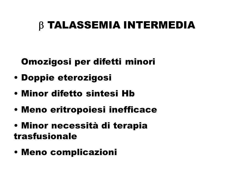  TALASSEMIA INTERMEDIA