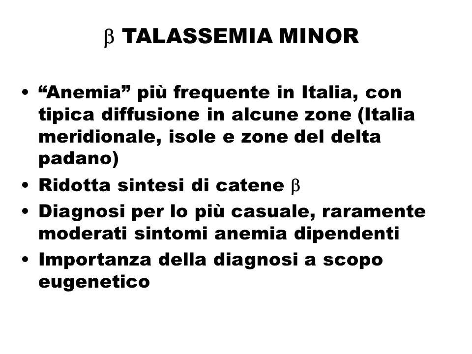  TALASSEMIA MINOR Anemia più frequente in Italia, con tipica diffusione in alcune zone (Italia meridionale, isole e zone del delta padano)