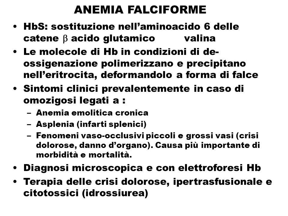 ANEMIA FALCIFORME HbS: sostituzione nell'aminoacido 6 delle catene  acido glutamico valina.