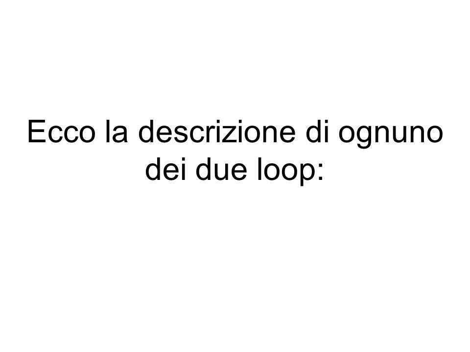 Ecco la descrizione di ognuno dei due loop: