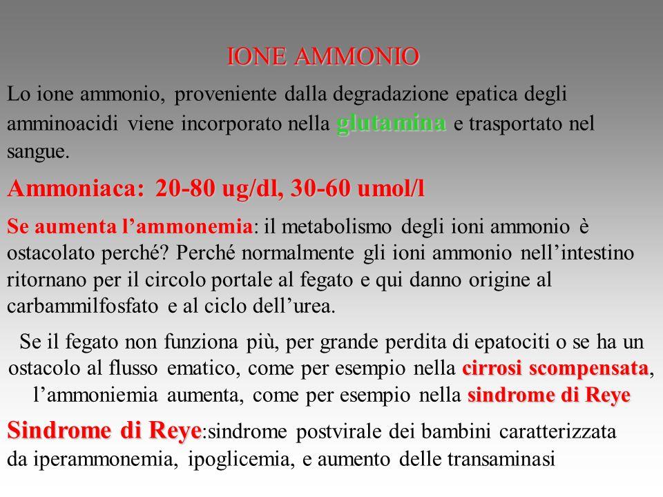 Ammoniaca: 20-80 ug/dl, 30-60 umol/l