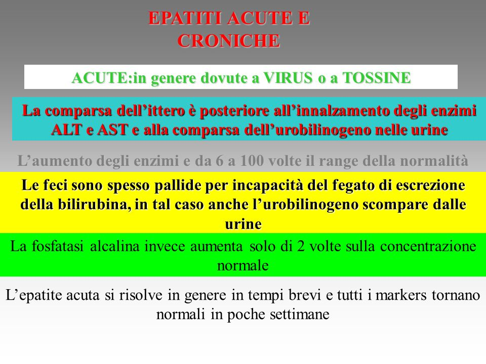 EPATITI ACUTE E CRONICHE