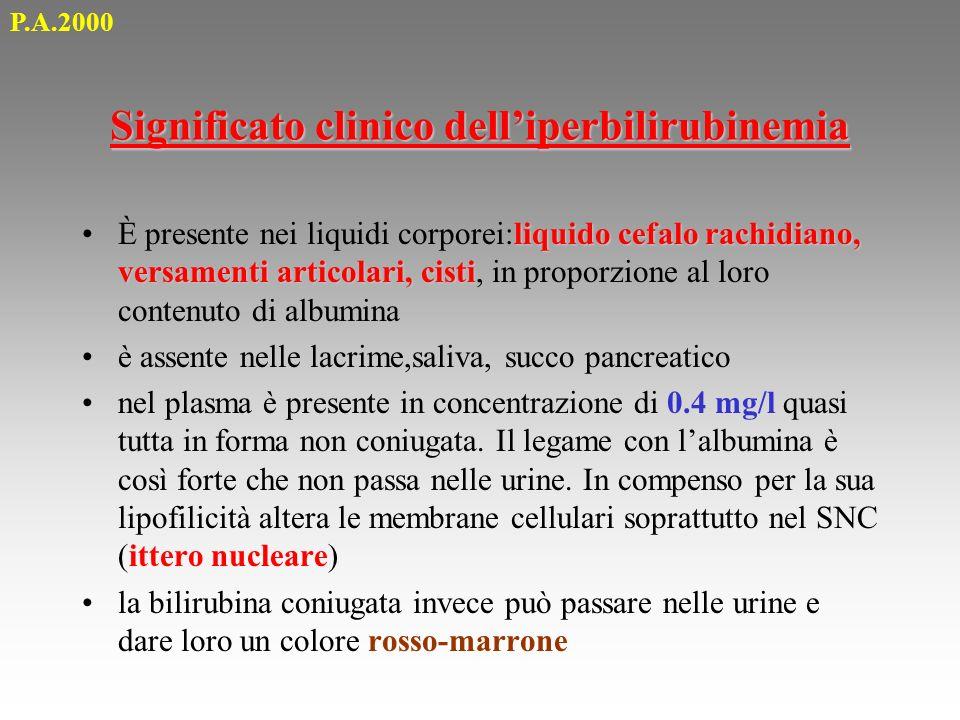 Significato clinico dell'iperbilirubinemia