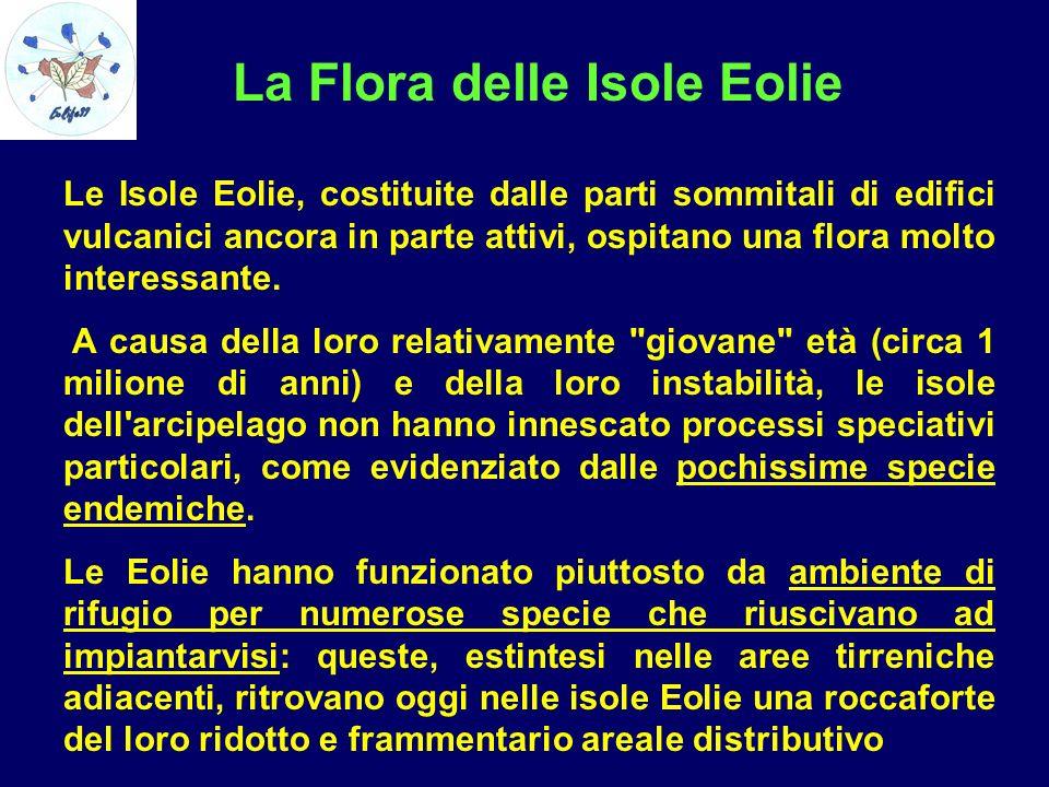 La Flora delle Isole Eolie