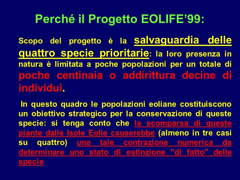 Perché il Progetto EOLIFE'99:
