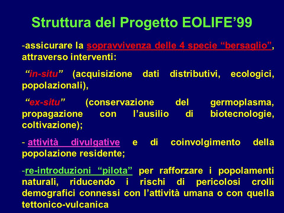 Struttura del Progetto EOLIFE'99