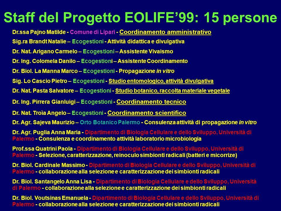 Staff del Progetto EOLIFE'99: 15 persone