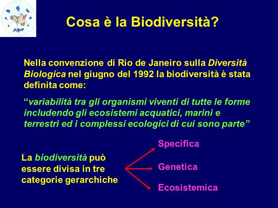Cosa è la Biodiversità Nella convenzione di Rio de Janeiro sulla Diversità Biologica nel giugno del 1992 la biodiversità è stata definita come: