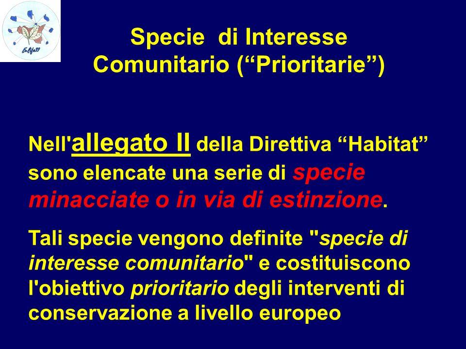 Specie di Interesse Comunitario ( Prioritarie )