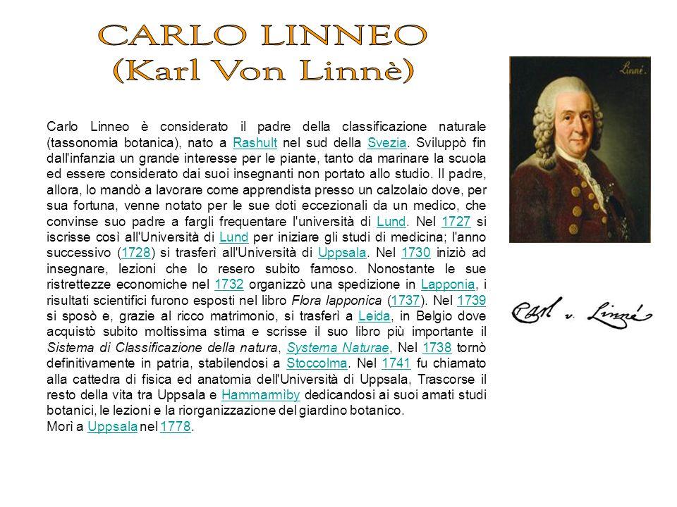 CARLO LINNEO (Karl Von Linnè)