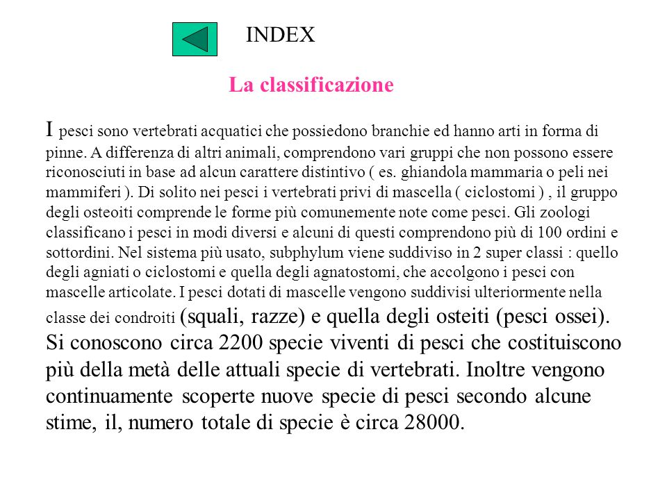 INDEX La classificazione.