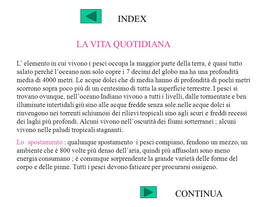 INDEX LA VITA QUOTIDIANA CONTINUA