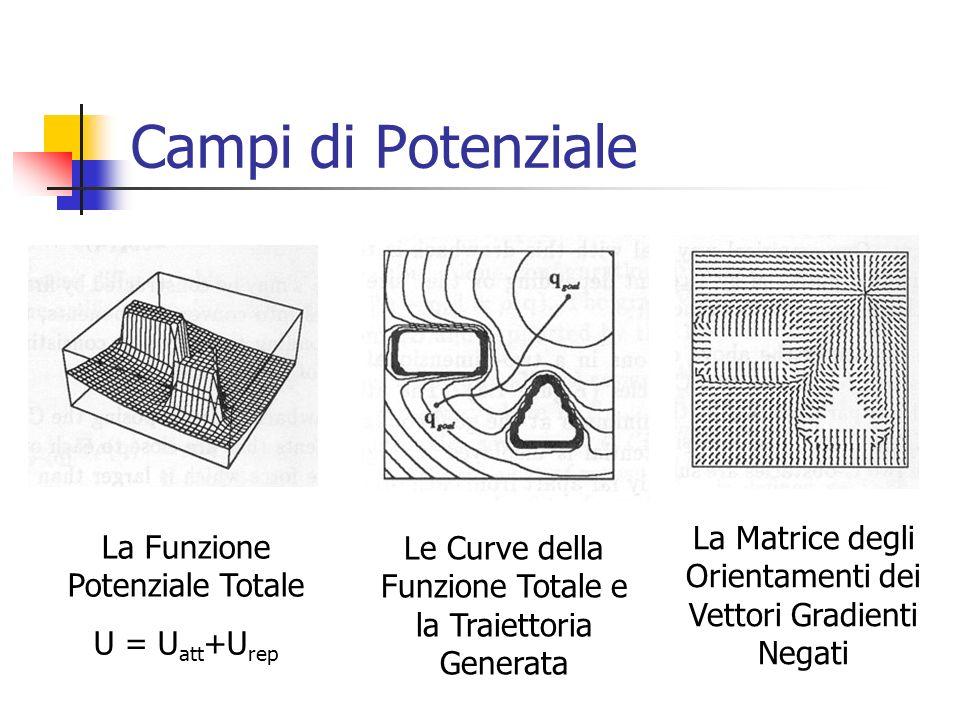 Campi di Potenziale La Matrice degli Orientamenti dei Vettori Gradienti Negati. La Funzione Potenziale Totale.