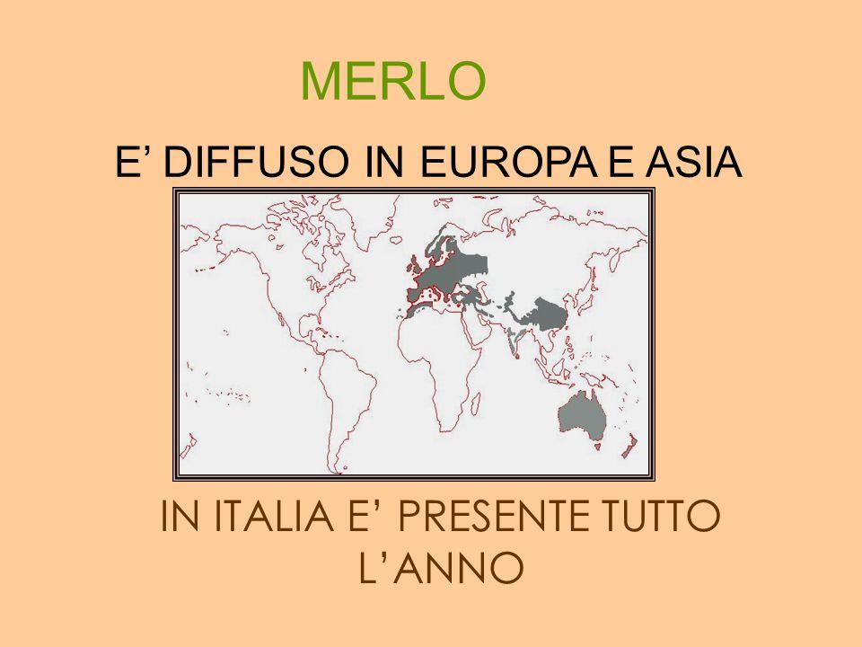 IN ITALIA E' PRESENTE TUTTO L'ANNO
