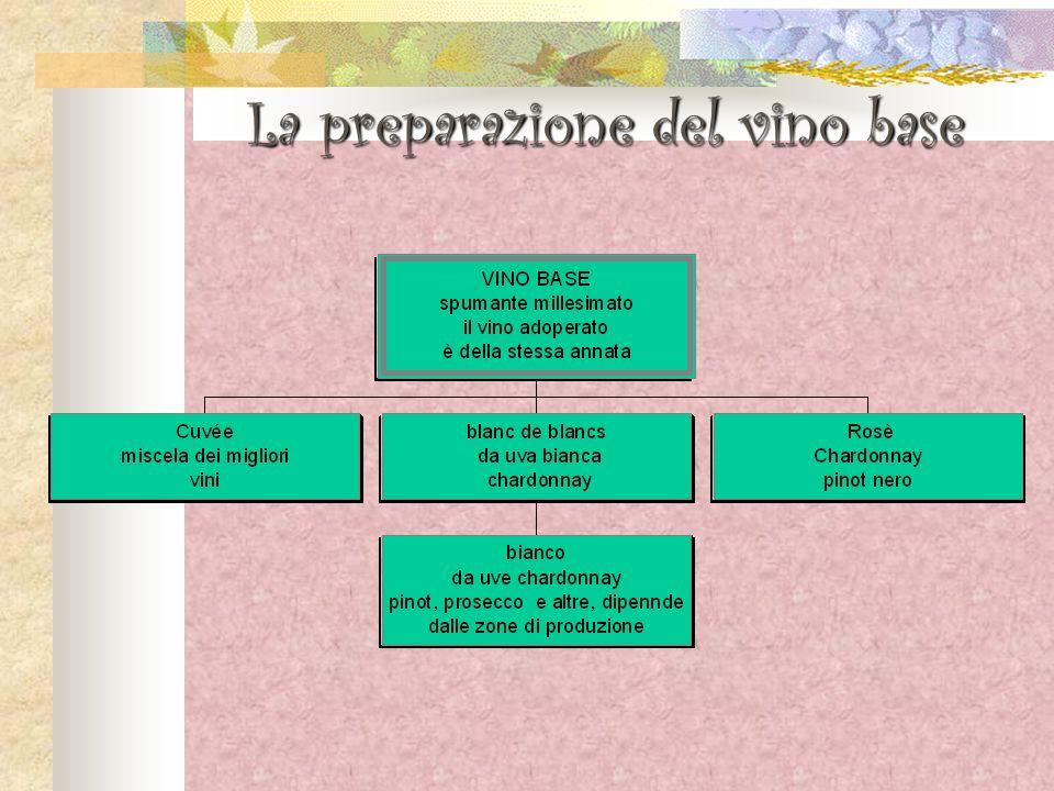 La preparazione del vino base