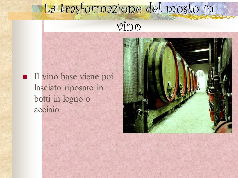 La trasformazione del mosto in vino