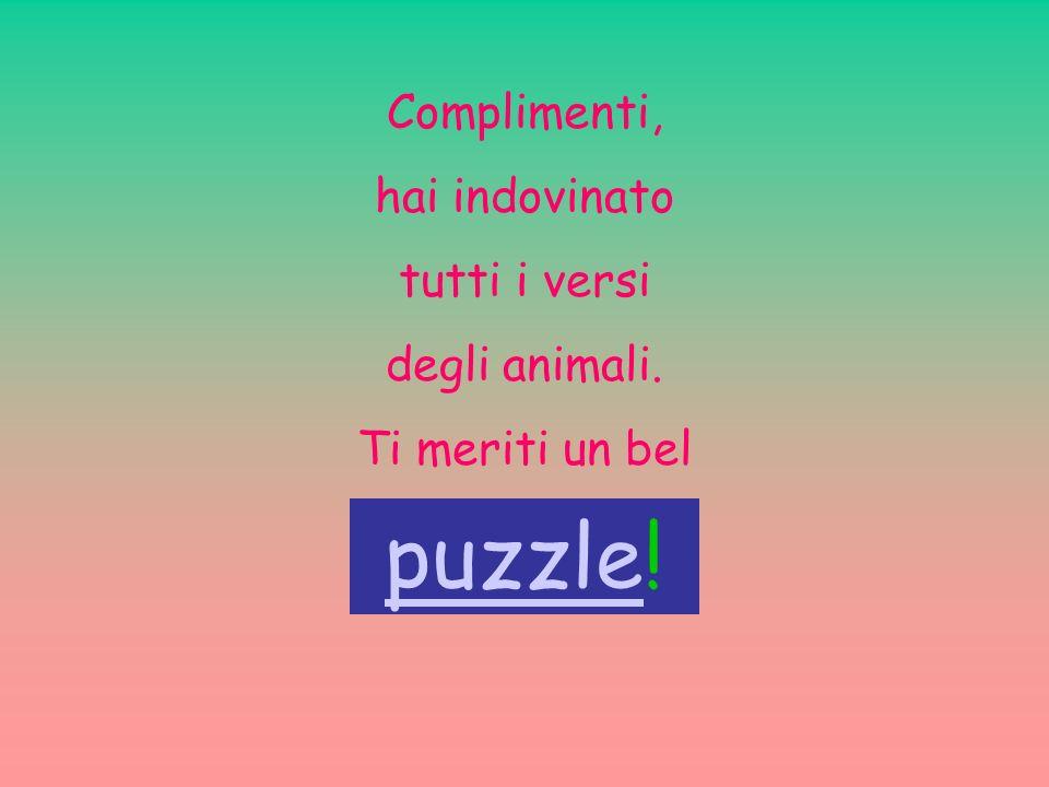 puzzle! Complimenti, hai indovinato tutti i versi degli animali.