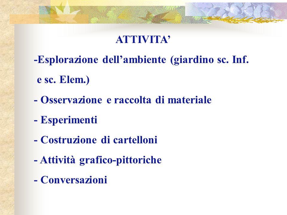 ATTIVITA' -Esplorazione dell'ambiente (giardino sc. Inf. e sc. Elem.) - Osservazione e raccolta di materiale.