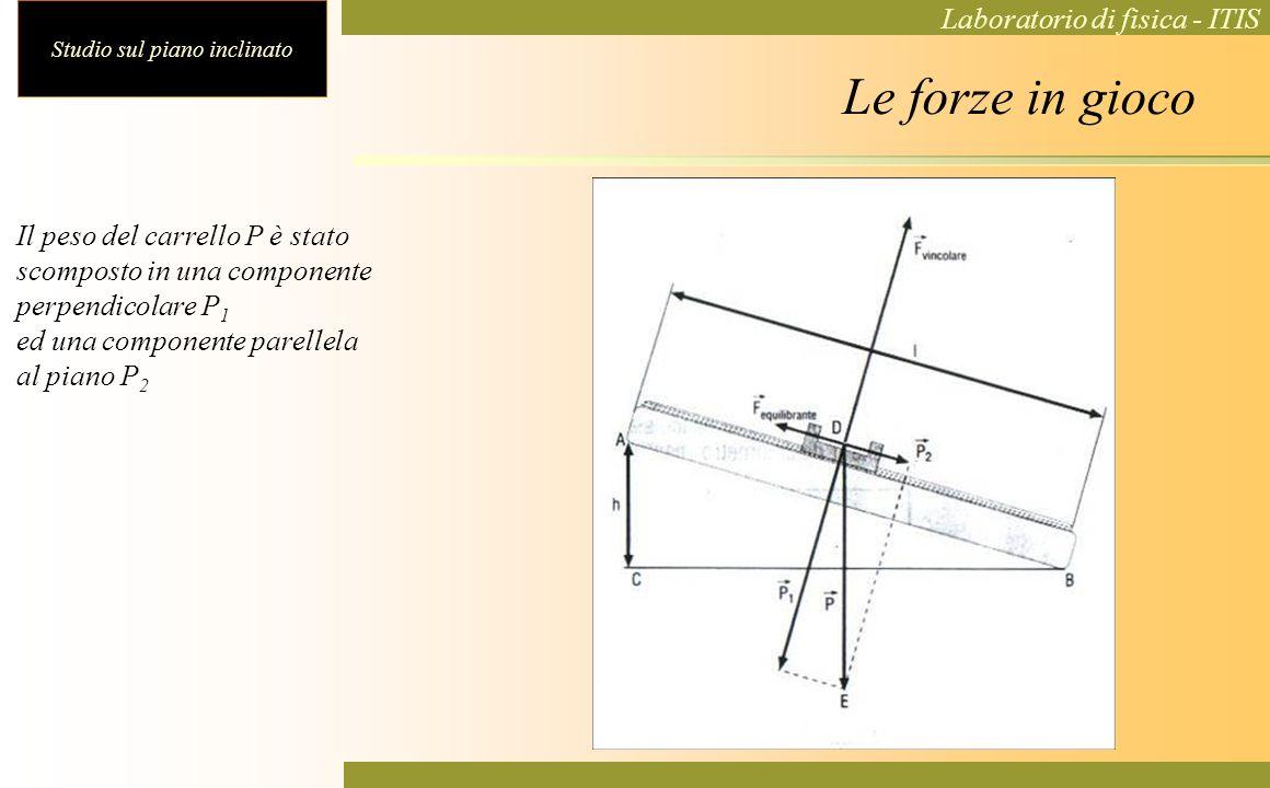 Le forze in gioco Il peso del carrello P è stato scomposto in una componente. perpendicolare P1. ed una componente parellela.