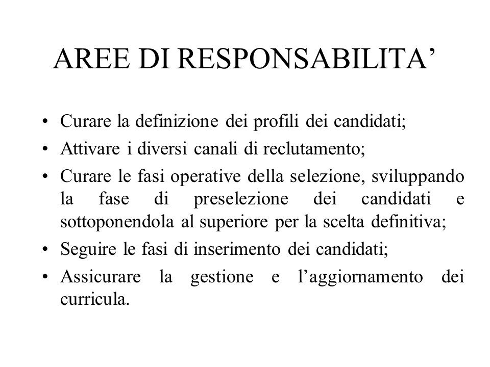 AREE DI RESPONSABILITA'