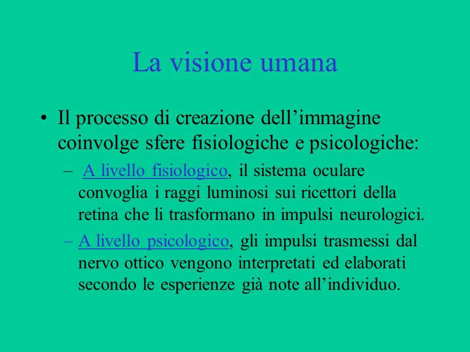 La visione umana Il processo di creazione dell'immagine coinvolge sfere fisiologiche e psicologiche: