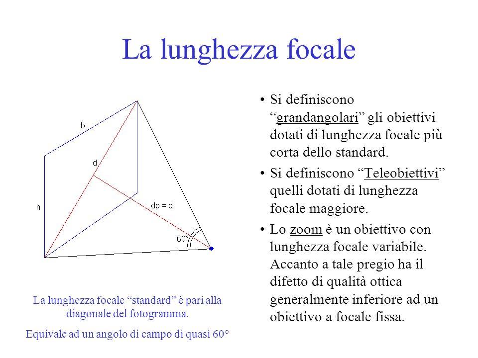 La lunghezza focale Si definiscono grandangolari gli obiettivi dotati di lunghezza focale più corta dello standard.