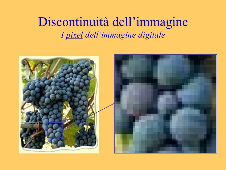 Discontinuità dell'immagine I pixel dell'immagine digitale