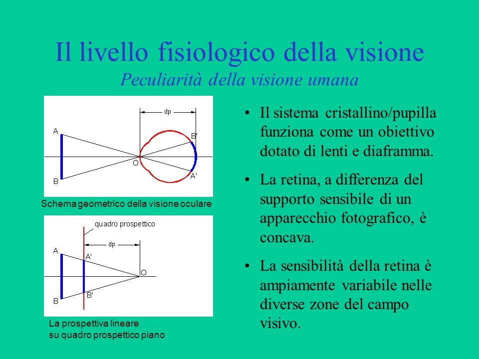 Il livello fisiologico della visione Peculiarità della visione umana