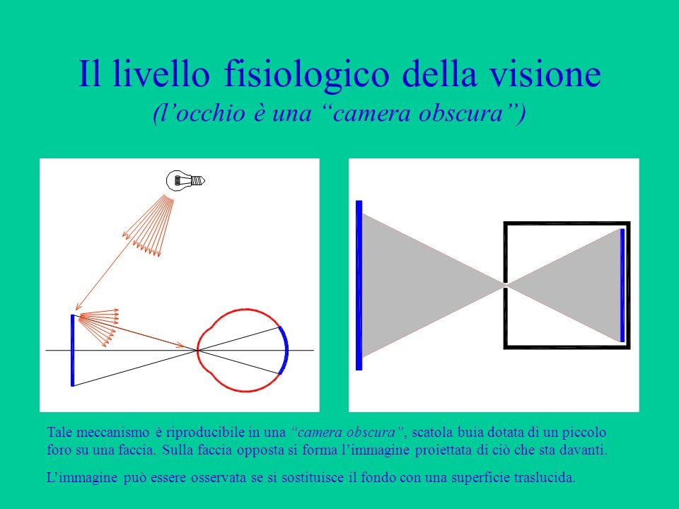 Il livello fisiologico della visione (l'occhio è una camera obscura )