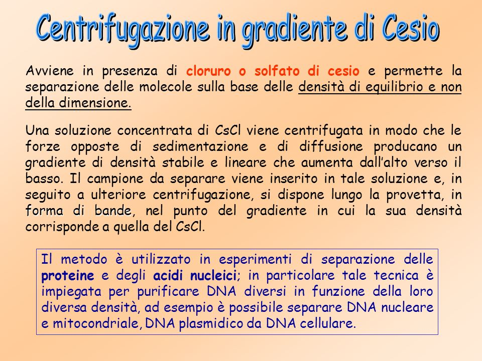 Centrifugazione in gradiente di Cesio
