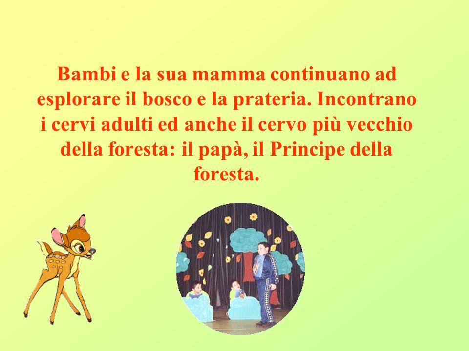 Bambi e la sua mamma continuano ad esplorare il bosco e la prateria
