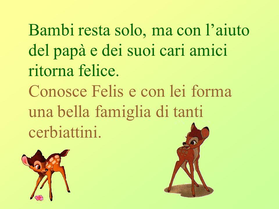Bambi resta solo, ma con l'aiuto del papà e dei suoi cari amici ritorna felice.