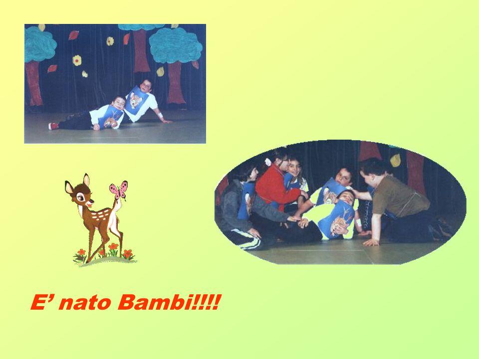 E' nato Bambi!!!!