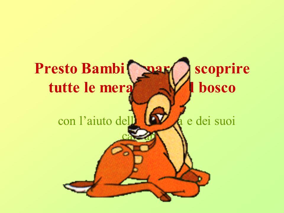 Presto Bambi impara a scoprire tutte le meraviglie del bosco
