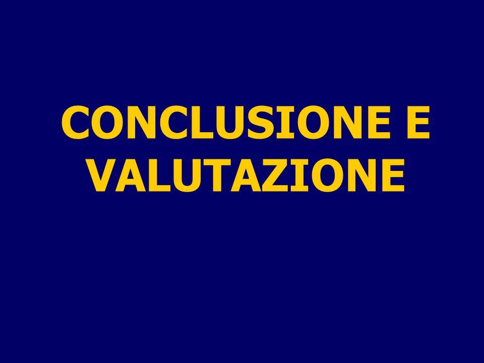 CONCLUSIONE E VALUTAZIONE