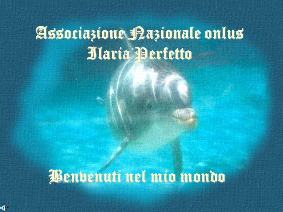 Associazione Nazionale onlus Ilaria Perfetto