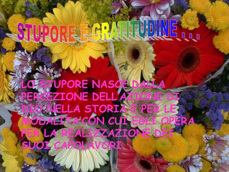 STUPORE E GRATITUDINE . . .