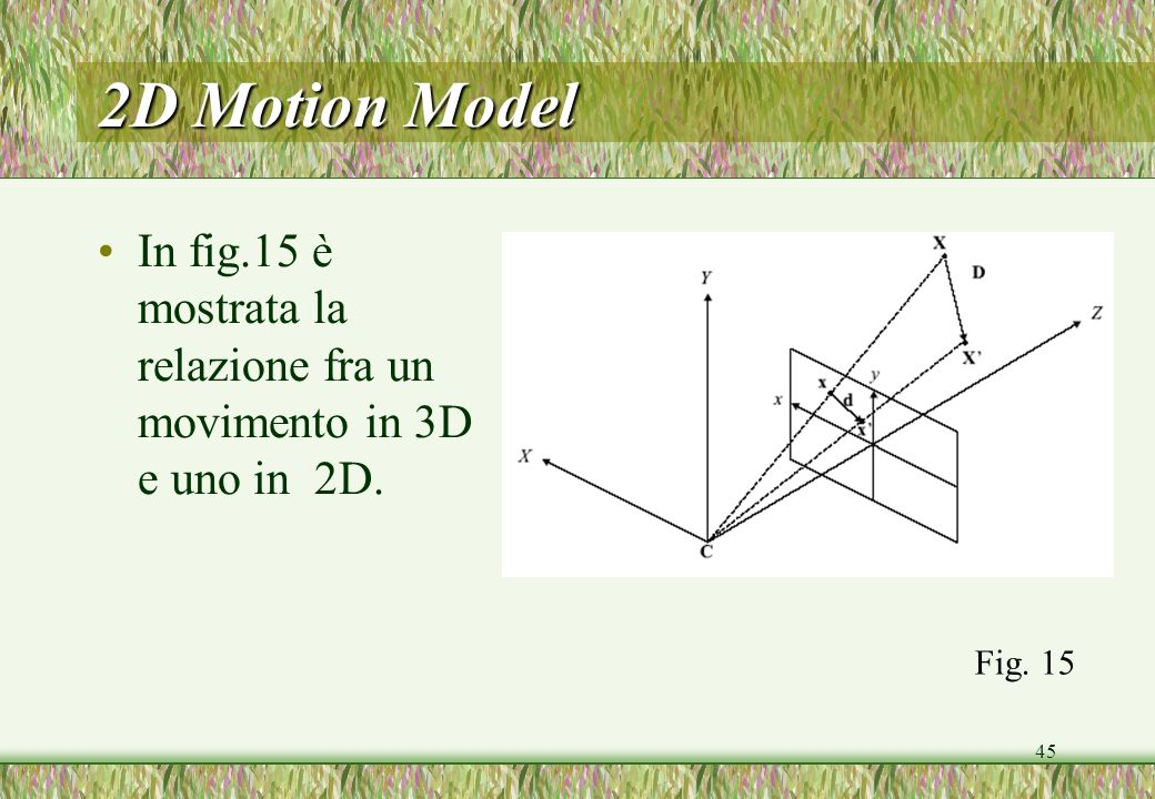 2D Motion Model In fig.15 è mostrata la relazione fra un movimento in 3D e uno in 2D. Fig. 15