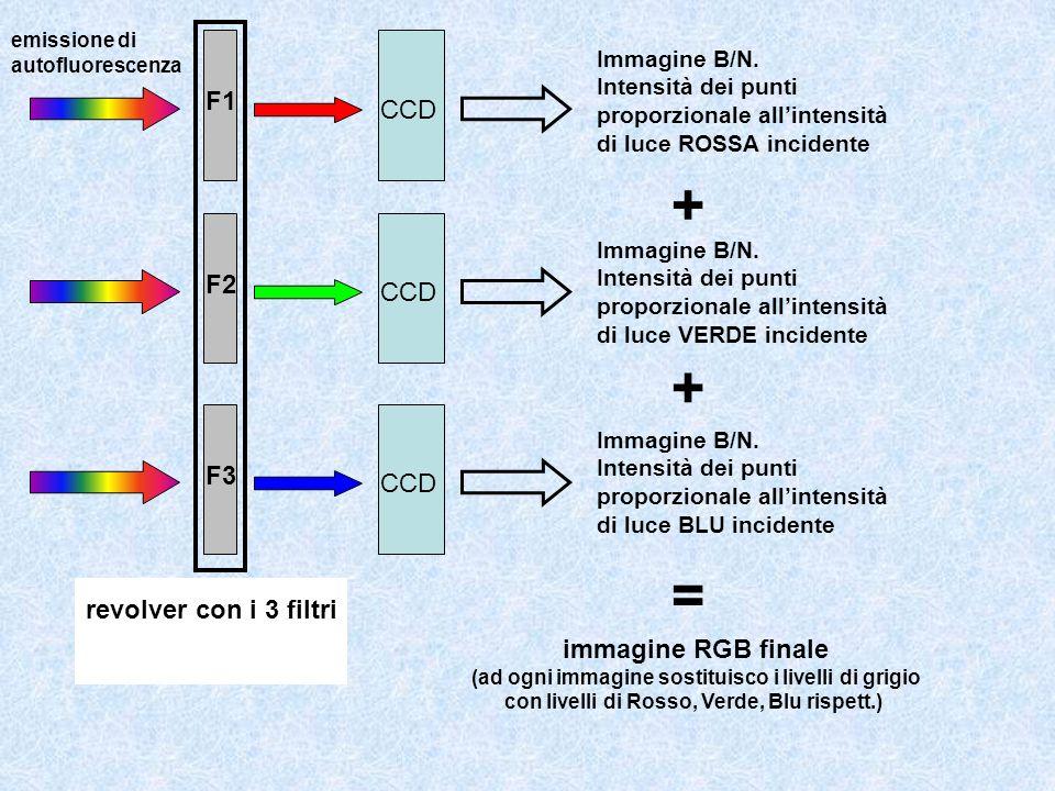+ + = F1 CCD F2 CCD F3 CCD revolver con i 3 filtri filtro passa banda