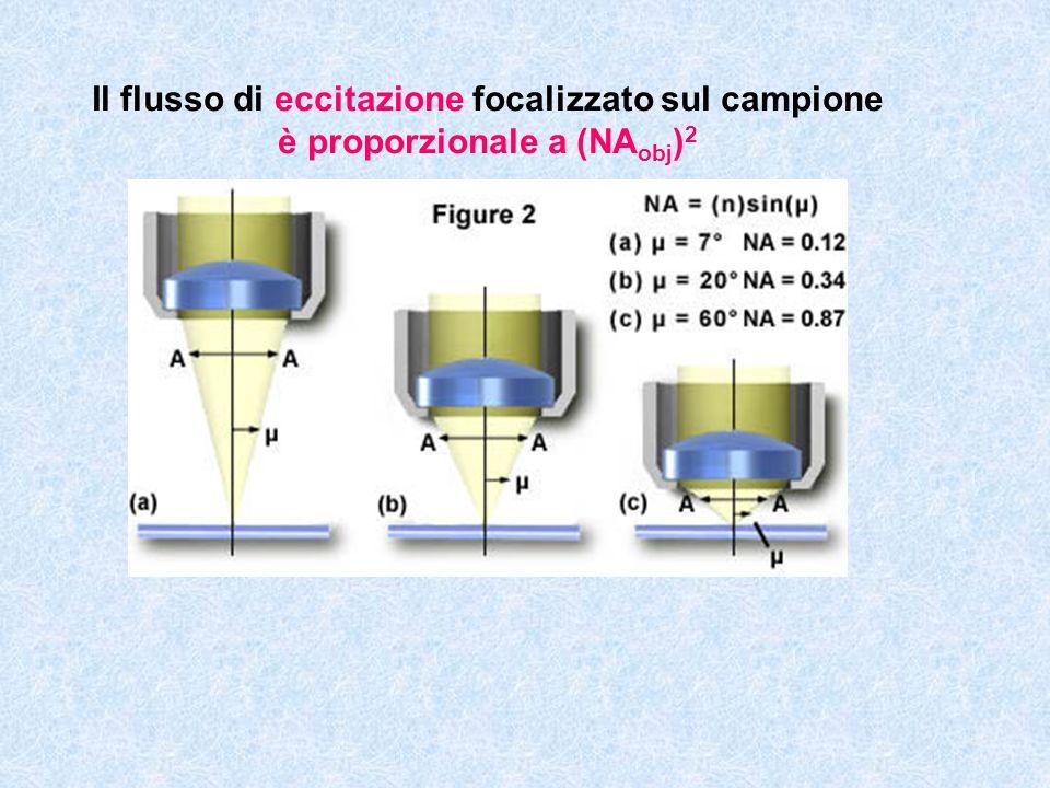 Il flusso di eccitazione focalizzato sul campione è proporzionale a (NAobj)2
