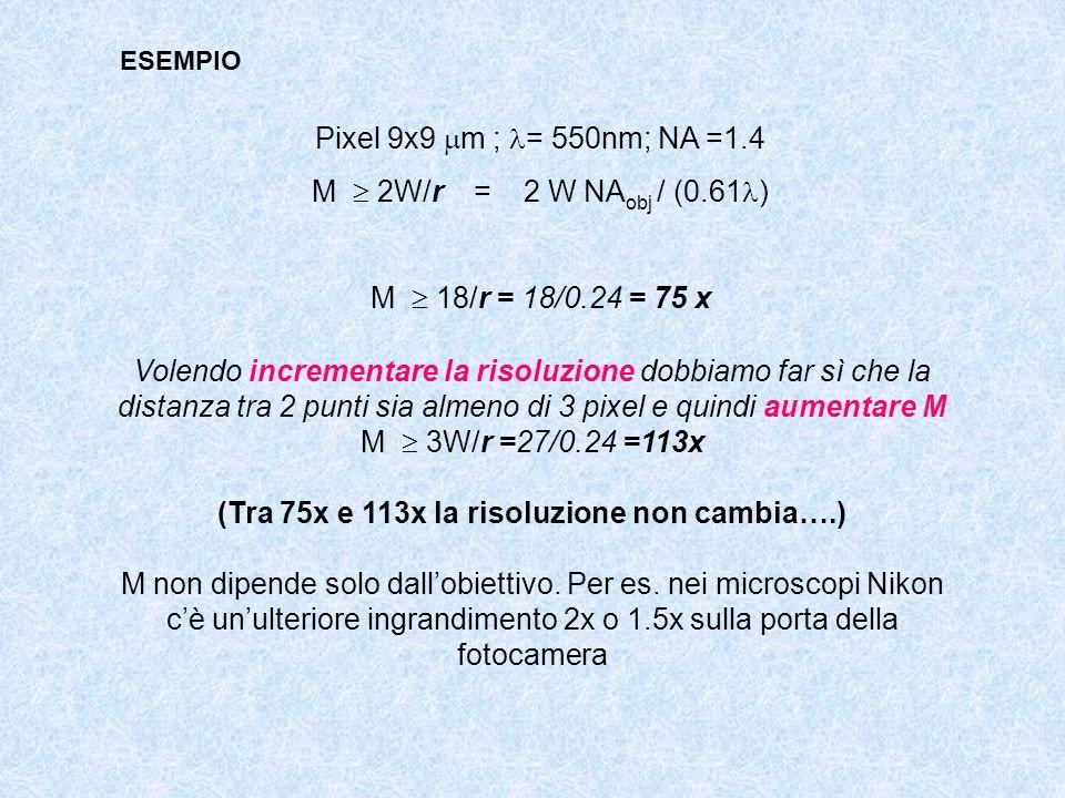 (Tra 75x e 113x la risoluzione non cambia….)