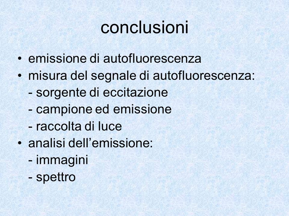 conclusioni emissione di autofluorescenza