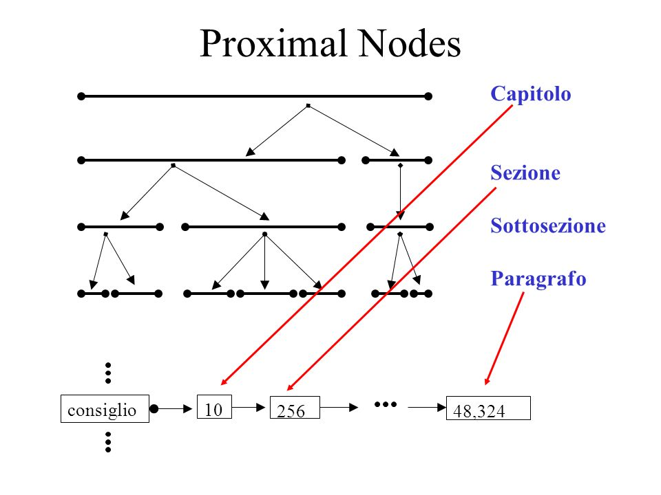 Proximal Nodes Capitolo Sezione Sottosezione Paragrafo consiglio 10