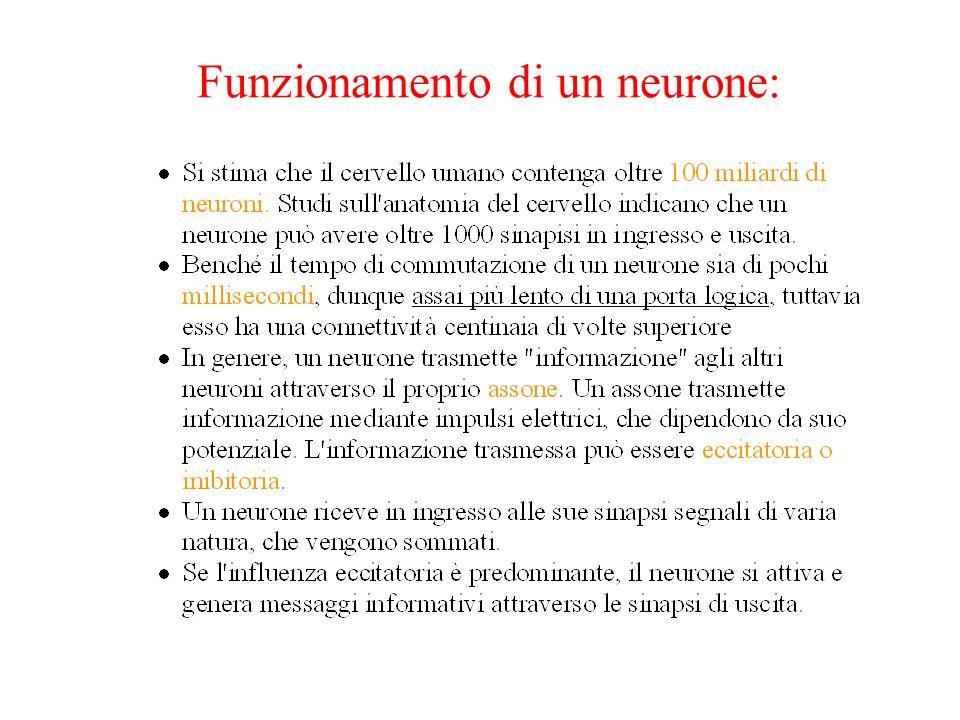 Funzionamento di un neurone: