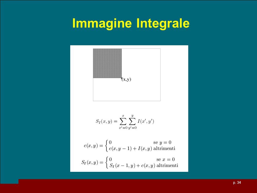 Immagine Integrale